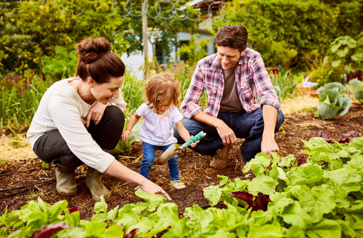 família econômica no jardim